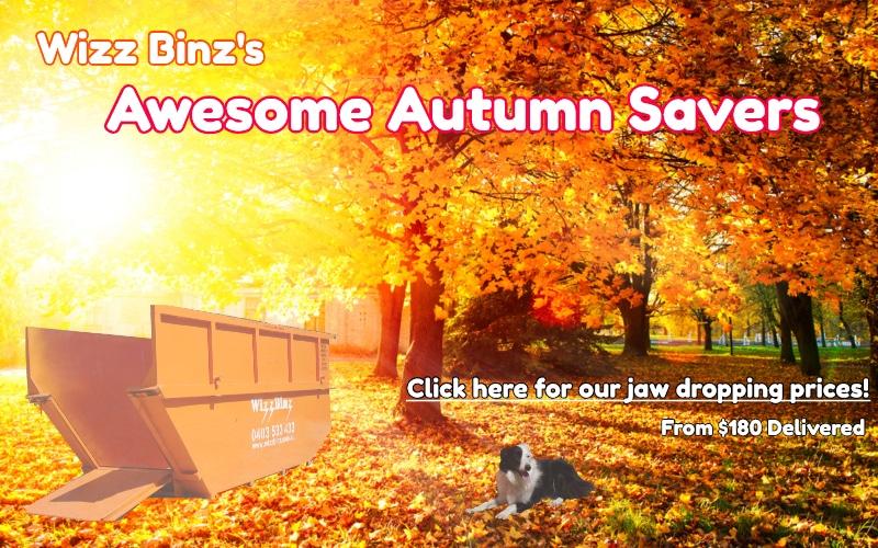 Wizz Binz special skip bin hire rates